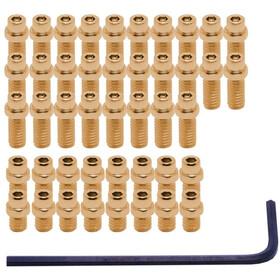 DMR Vault Pedal FlipPin Kit gold